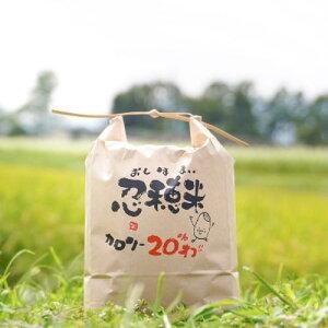 【ふるさと納税】【令和二年産】低カロリー米 忍穂(おしほ)5kg 【お米・米】 お届け:2020年10月上旬より順次出荷