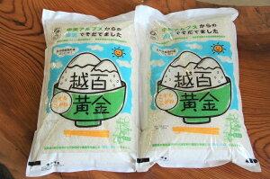 【ふるさと納税】越百黄金(こすもこがね)米10kg(5kg×2袋)