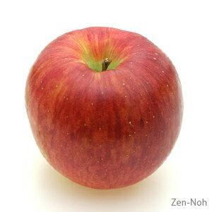 【ふるさと納税】季節のりんご『シナノスイート』(5kg)(予約制)