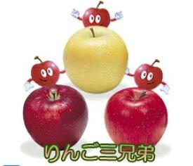 【ふるさと納税】季節のりんご『お任せコース』(5kg)(予約制)