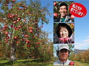 【ふるさと納税】サンふじリンゴ(10kg)(予約制)