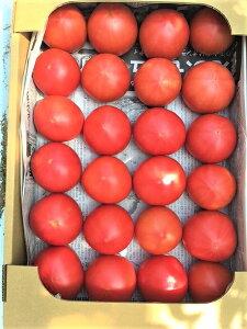 【ふるさと納税】石川農園のこだわりトマト(3kg)