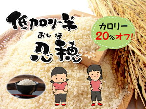 【ふるさと納税】低カロリー米 忍穂(おしほ)5kg