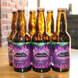 【ふるさと納税】南信州地ビール『ヤマソーホップ』6本セット