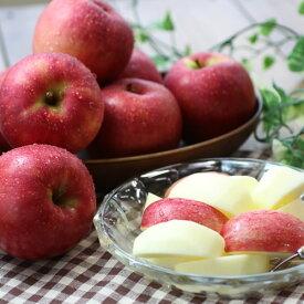 【ふるさと納税】りんごのトップバッターつがる! 長野県産 りんご(つがる) 約3kg 秀品※2021年8月中旬〜9月中旬頃に順次発送予定※着日指定はできません。沖縄・離島への発送不可。