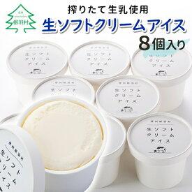 【ふるさと納税】ふわっと優しいミルク味!搾りたて生乳使用 生ソフトクリームアイス 8個入り