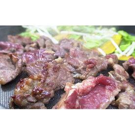 【ふるさと納税】【かんたん調理!】遠山ジンギス3点セット 【ジンギスカン・鶏・豚・肉・加工品】