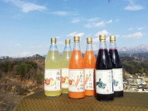 【ふるさと納税】2-A60 人気果汁6本セット(KF07)