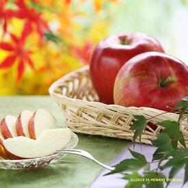 【ふるさと納税】りんご シナノスイート[約5kg] ※2020年10月上旬〜10月下旬発送※