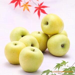 【ふるさと納税】りんご シナノゴールド[約5kg] ※2020年10月中旬〜11月上旬発送※