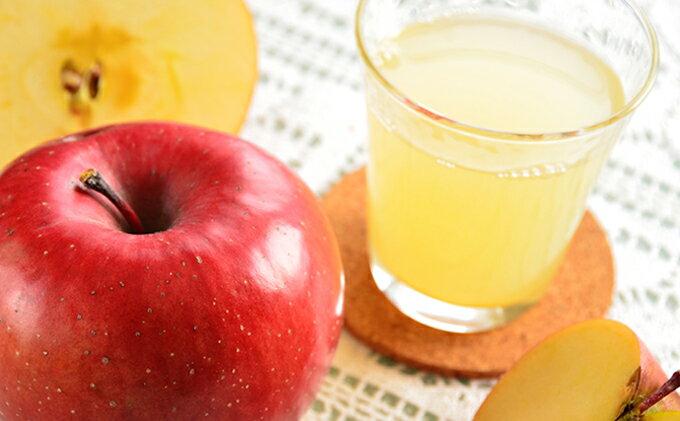 【ふるさと納税】サンふじ100%りんごジュース1000ml×6本 【果実ジュース・フルーツジュース】