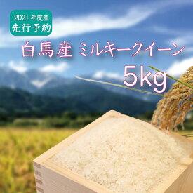 【ふるさと納税】A007-07 白馬産ミルキークイーン 5kg