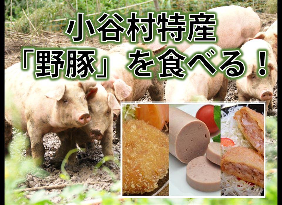 小谷野豚の加工品セット
