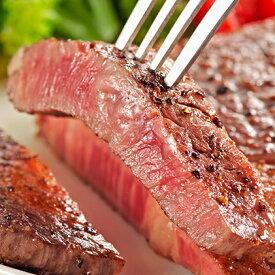 【ふるさと納税】信州牛和牛サーロインステーキ 600g 【牛肉・サーロイン・お肉・ステーキ】