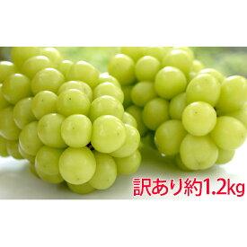 【ふるさと納税】YANAGISAWA シャインマスカット 約1.2kg 訳あり(粒・房混合) 【果物類・ぶどう・マスカット・フルーツ・シャインマスカット・約1.2kg・訳あり】 お届け:2021年8月下旬〜2021年10月中旬