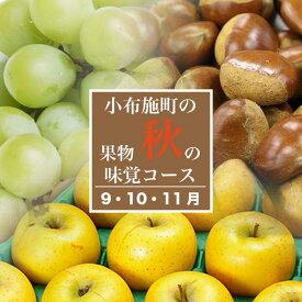 【ふるさと納税】3ヶ月頒布会(9・10・11月) 小布施町 秋の味覚コース