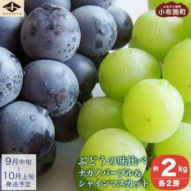 【ふるさと納税】 ぶどうの味比べ ナガノパープル&シャインマスカット(約2kg)