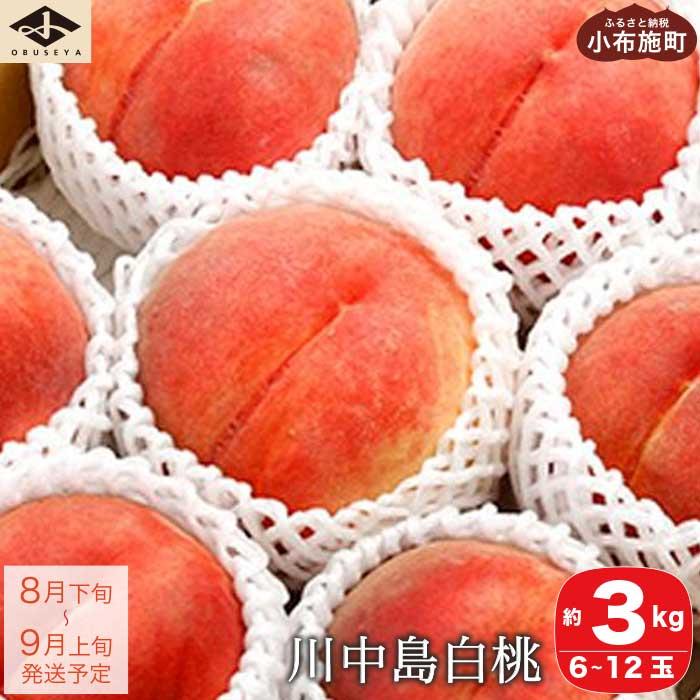 【ふるさと納税】 川中島白桃 約3kg