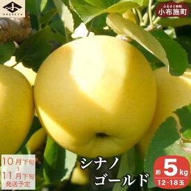 【ふるさと納税】シナノゴールド 約5kg
