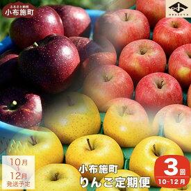【ふるさと納税】小布施町りんごの定期便 3回コース(約5kg×3回)