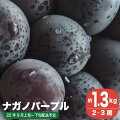 【ふるさと納税】ナガノパープル(約1.kg)