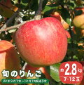 【ふるさと納税】季節の旬のりんご約3kg
