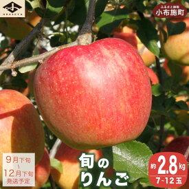 【ふるさと納税】季節の旬のりんご 約3kg