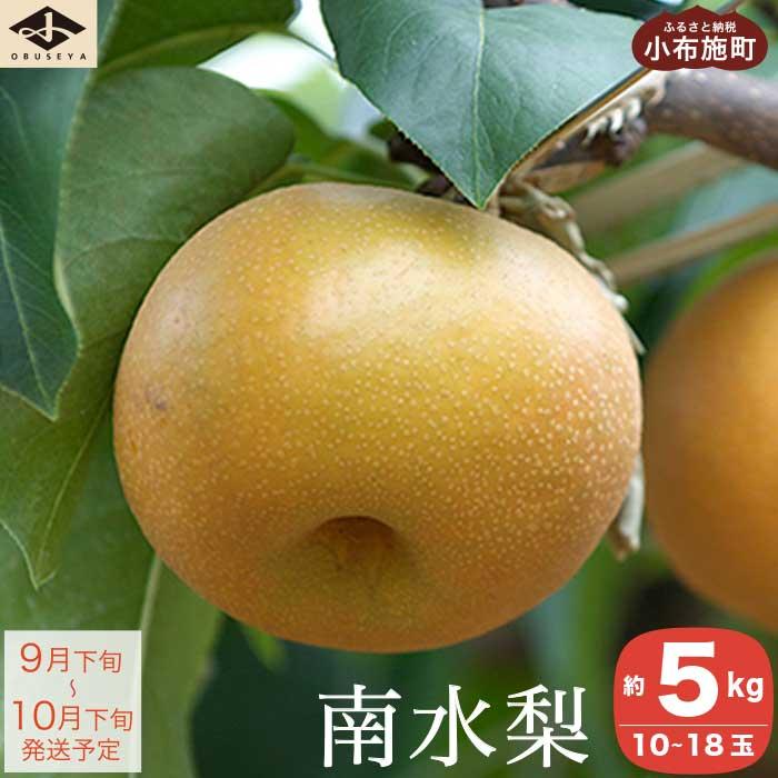 【ふるさと納税】南水梨 約5kg