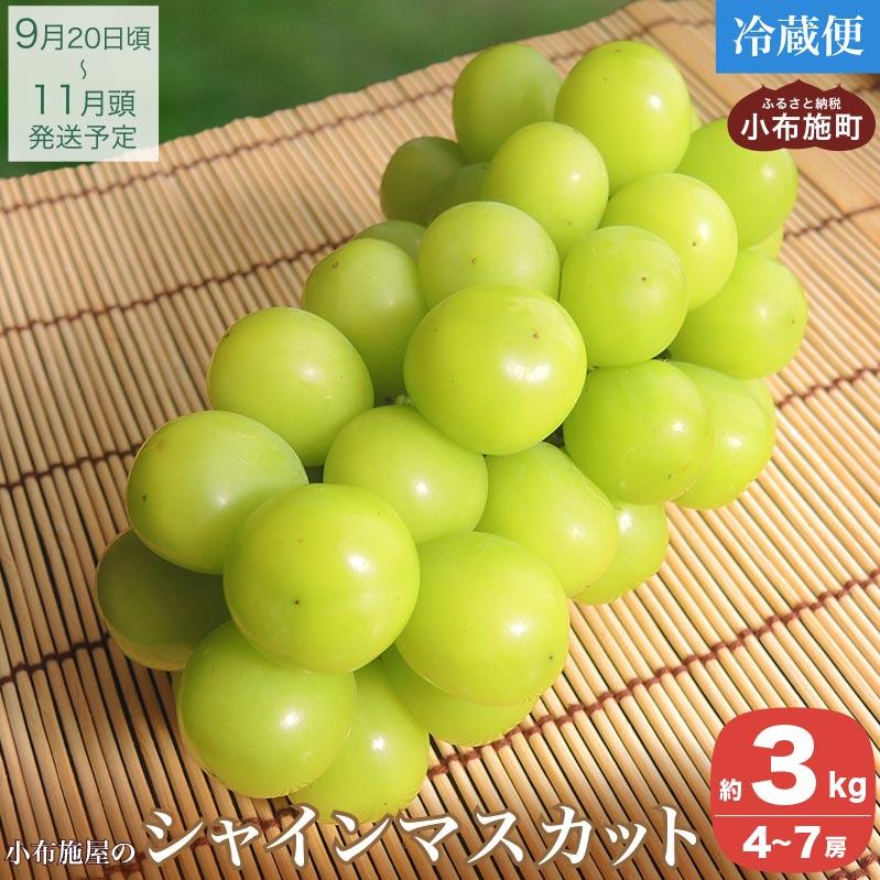【ふるさと納税】シャインマスカット(約3kg)