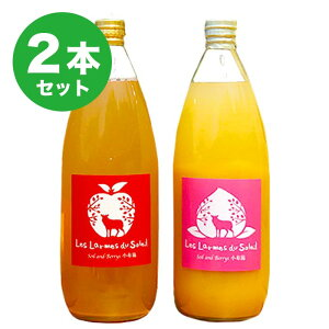 【ふるさと納税】新規就農者応援コース 100%りんごジュース、黄金桃と白桃のジュース(2本セット)
