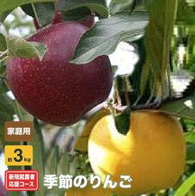 【ふるさと納税】新規就農者応援コース 季節のりんご(家庭用)約3kg
