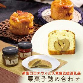 【ふるさと納税】【緊急支援品】3社栗菓子詰合せ