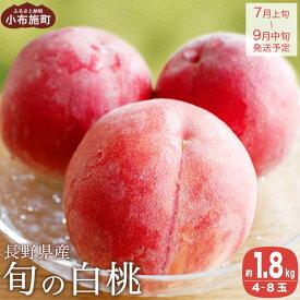 【ふるさと納税】 旬の白桃 約1.5kg