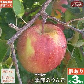 【ふるさと納税】新規就農者応援コース 訳あり 季節のりんご 約3kg