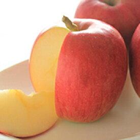 【ふるさと納税】シナノスイート(自家用)約10kg 【果物類・林檎・りんご・リンゴ】 お届け:2020年10月中旬〜10月下旬