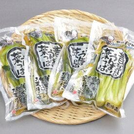 【ふるさと納税】A-5b 野沢菜セットBセット