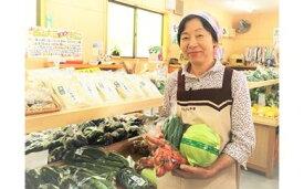【ふるさと納税】301*さんさん市場 やさい名人がチョイスする新鮮季節の野菜セット