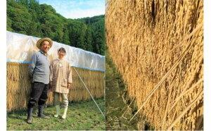 【ふるさと納税】302*信州小川村季節の野菜とこだわりのお米セット