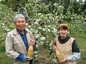 【ふるさと納税】601*信州小川村成就地区限定 りんご贅沢盛りだくさん!リンゴもジュースも大満足!