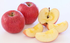 【ふるさと納税】 ヒライ農園限定 サンふじ りんご 5kg 【 果物類 フルーツ リンゴ 信州 長野 】 お届け:12月上旬〜