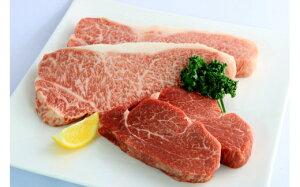 【ふるさと納税】A5飛騨牛『ヒレ(2枚)』と『サーロイン(厚切り2枚)』ステーキセット