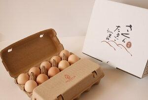 【ふるさと納税】特選 さくらたまご 20個(10個入×2パック) 新鮮な卵(発送当日・または前日に採れた卵)をお届けします