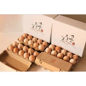 【ふるさと納税】特選 さくらたまご【定期便 6カ月】☆40個(10個入×4パック)を月1回お届け☆ 新鮮な卵をお届けします