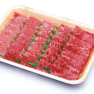 【ふるさと納税】A5 飛騨牛 もも 赤身 焼肉 500g≪冷凍≫化粧箱入 和牛 国産 牛肉 肉 ギフト お歳暮 にも b527