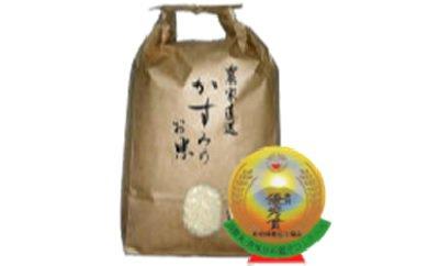 【ふるさと納税】美濃加茂産のお米(20kg)