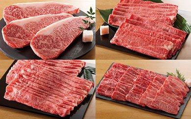 【ふるさと納税】【定期便】飛騨牛食べ比べコース