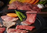【ふるさと納税】A5等級飛騨牛焼肉用900g