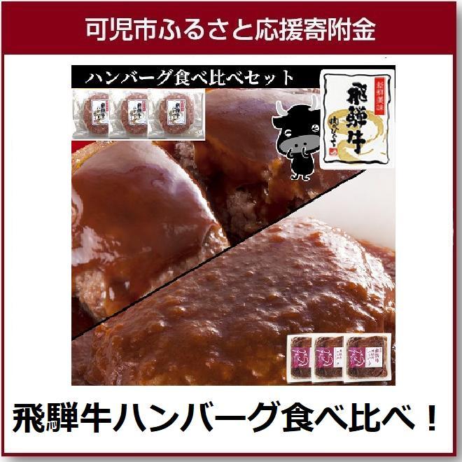 【ふるさと納税】飛騨牛ハンバーグ食べ比べセット
