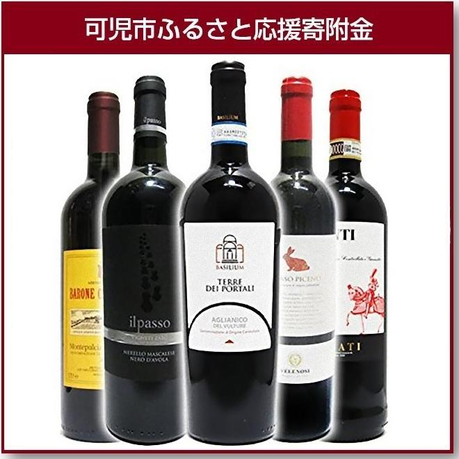 【ふるさと納税】岐阜のきき酒師が厳選した赤ワインセット 厳選イタリア赤ワイン5本セット(750ml×5本)