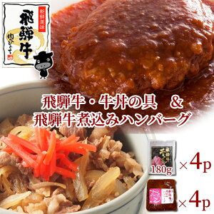 【ふるさと納税】飛騨牛 牛丼の具&煮込みハンバーグ
